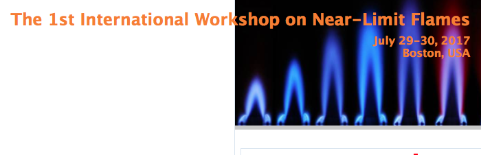 1st International Workshop on Near-Limit Flames